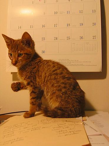 Oliver 2004_10_31
