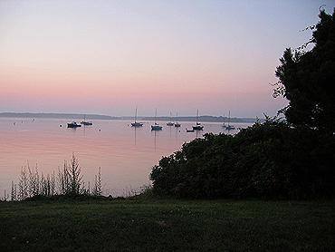 Boats_trees