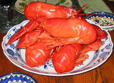 Claude_lobster