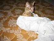 Oliver2005_01_10_05bedxtrasm