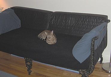 Olliedavid2005_07_22b